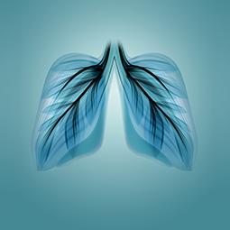 Servicios de Prevención Vías respiratorias - Apoteca Natura